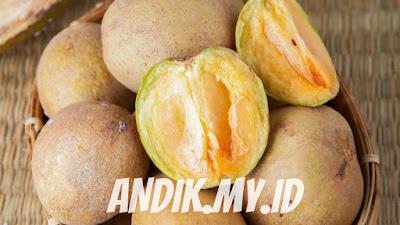 sawo, buah sawo, gizi sawo, manfaat sawo, khasiat sawo