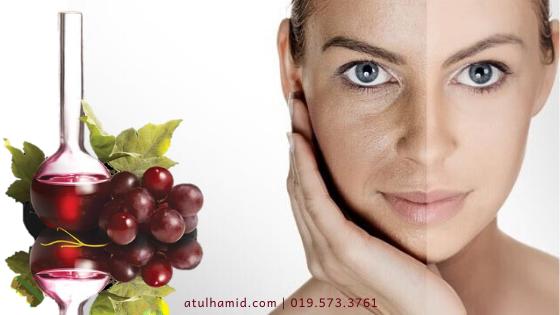 Manfaat Polifenol untuk Kulit Sihat dan Cantik Berseri