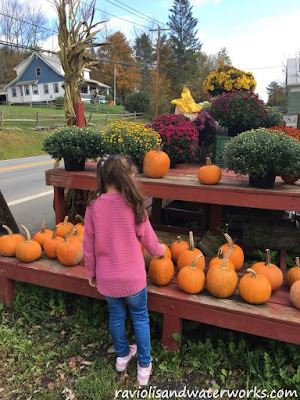 ten fall activities; ten fun fall activities; fall activities, autumn activities; autumn to do; villa roma; callicoon NY