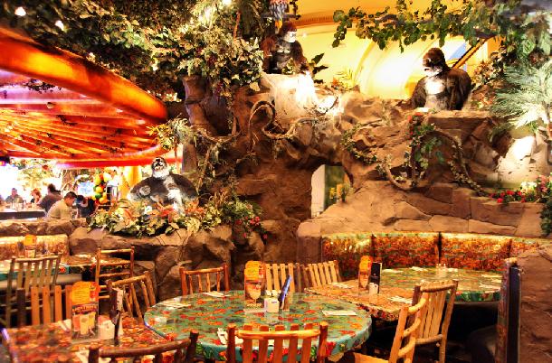 Série De Mensagens E Jantar De: Restaurante Rainforest Cafe Em Las Vegas