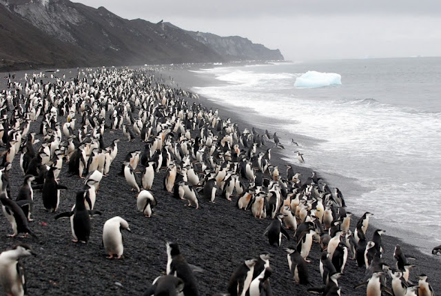 Deception Island, Antartica