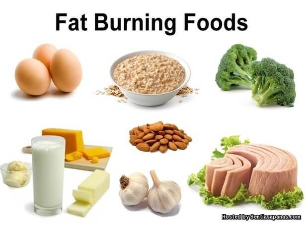 Metabolisme Rendah