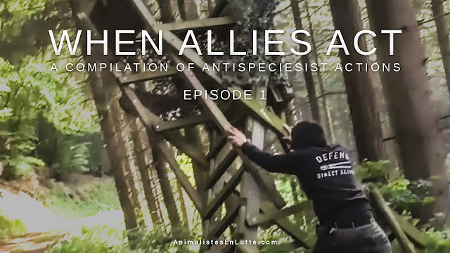 When allies act - episode 1 - a compilation of antispeciesist action - une compilation d'actions antispécistes