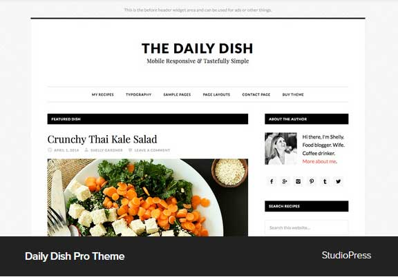 DailyDish Pro Theme Award Winning Pro Themes for Wordpress Blog : Award Winning Blog
