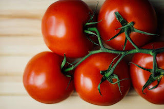 healthy tomatoes