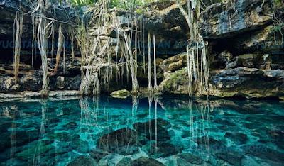 Haz el recorrido de los CENOTES, perfecto para los aventureros que les gusta el agua cristalina.