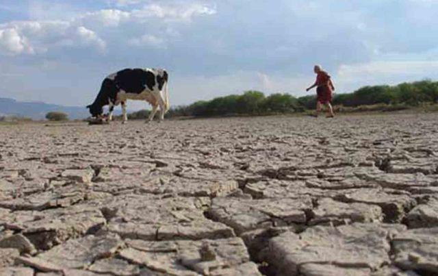 Sequía en región de Los Lagos
