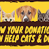 HowYour Donations Can Help Cats & Dogs #infographic