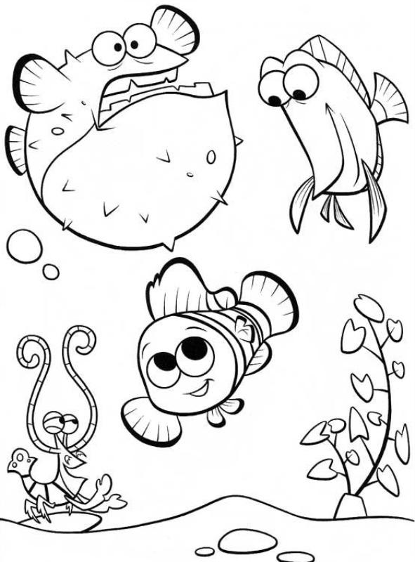 Belajar Mewarnai Gambar Ikan Nemo Download Gambar Online