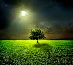 puisi_bulan_purnama_untuk_kekasih