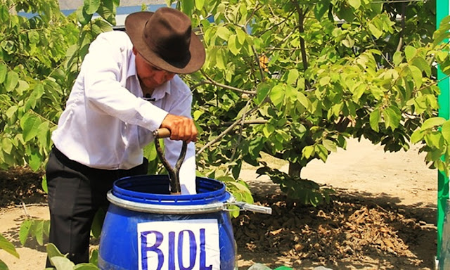 Minagri, ¿Qué es el biol? Beneficios