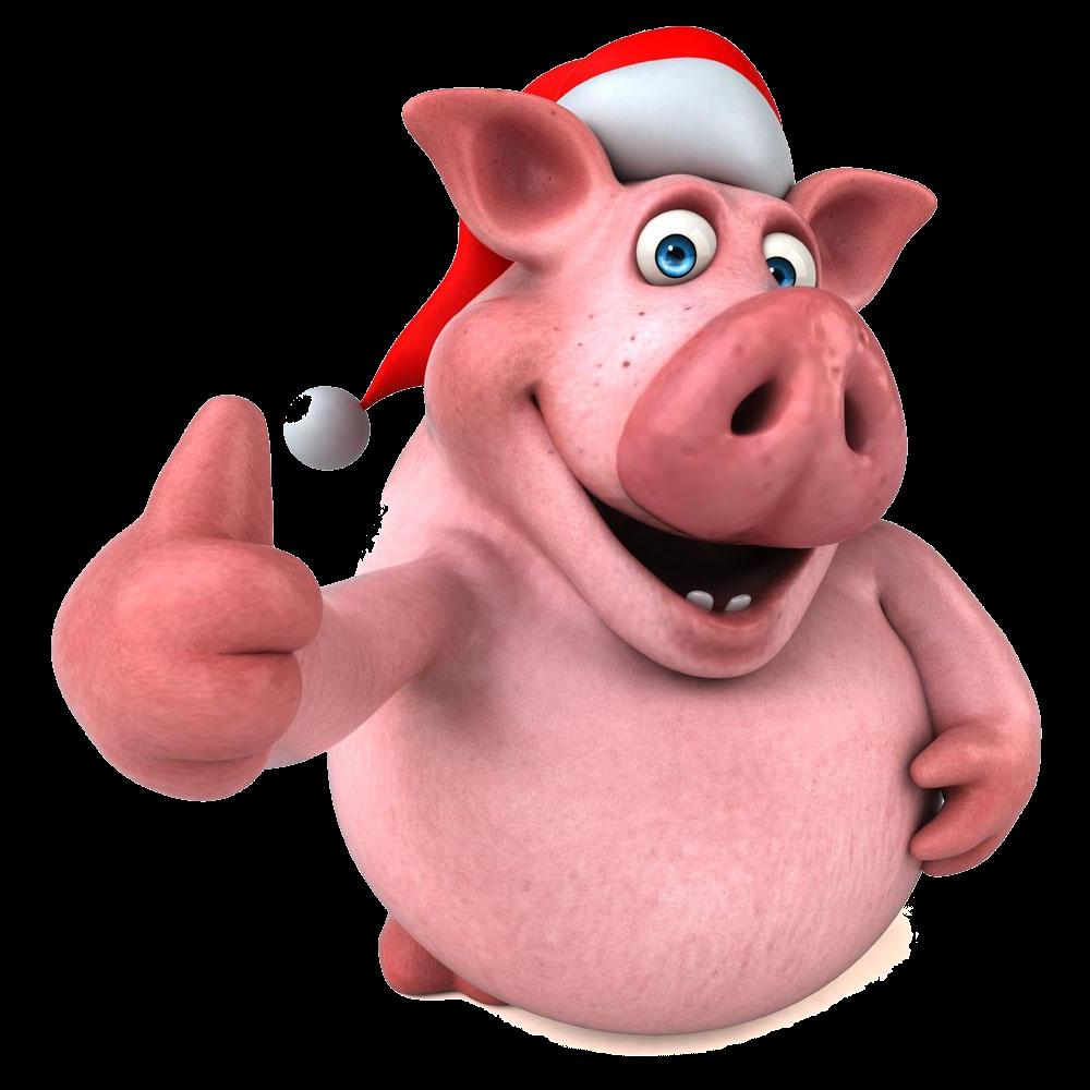 Смешная свинка картинка на новый год