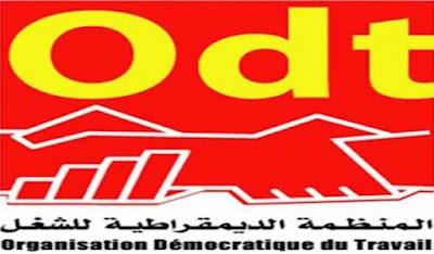 المنظمة الديمقراطية للتعليم