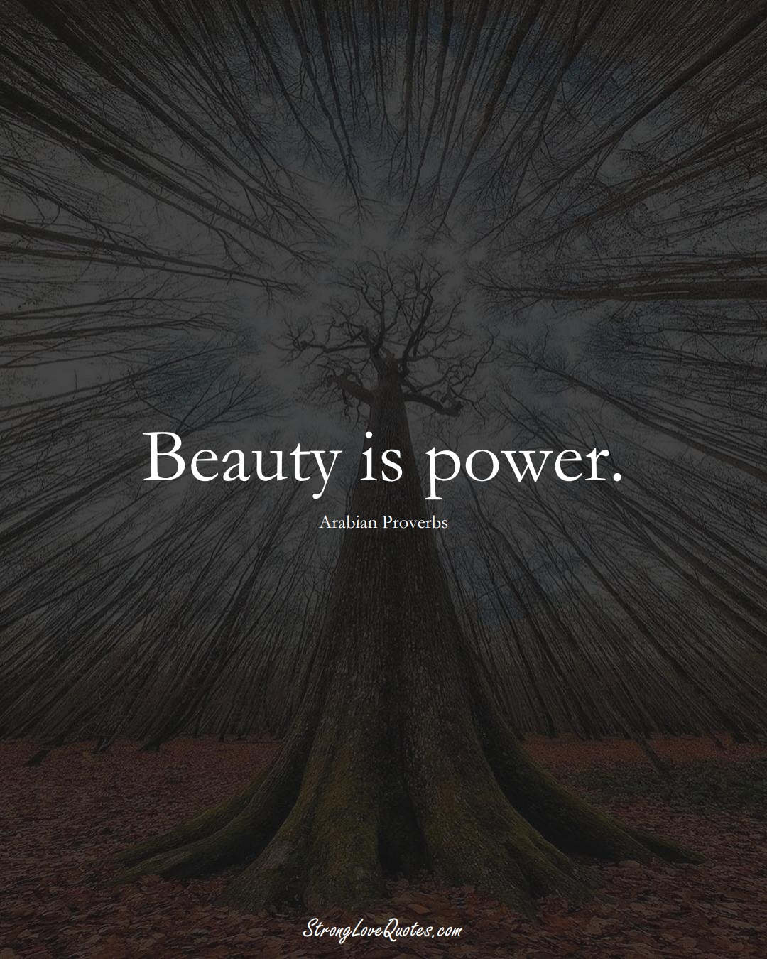 Beauty is power. (Arabian Sayings);  #aVarietyofCulturesSayings
