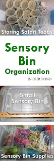 Sensory Bin Organization Ideas from In Our Pond