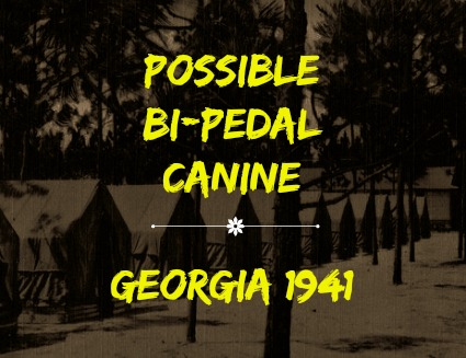 Possible Bi-Pedal Canine - Georgia 1941