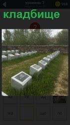 кладбище на котором рядами установлены камни с надписями