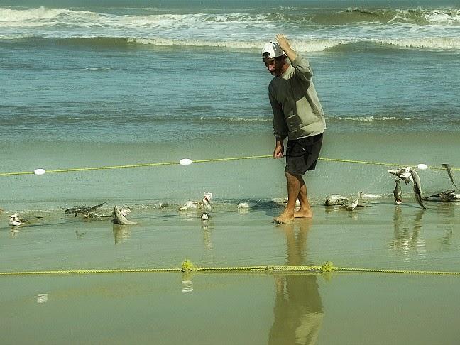 Pescador coordena a retirada da rede, na praia, no Parque da Lagoa do Peixe, em Tavares
