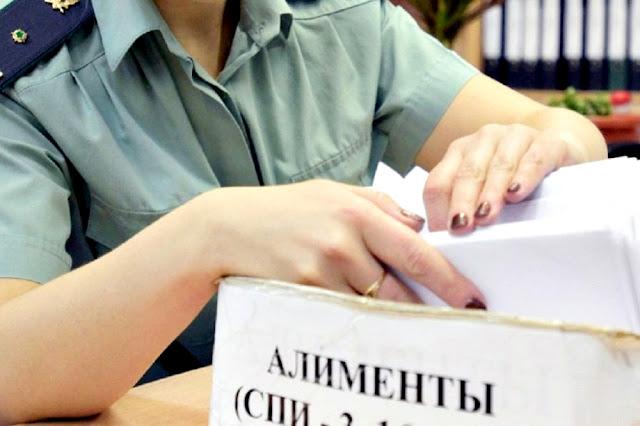 В России может появиться новый вид алиментов