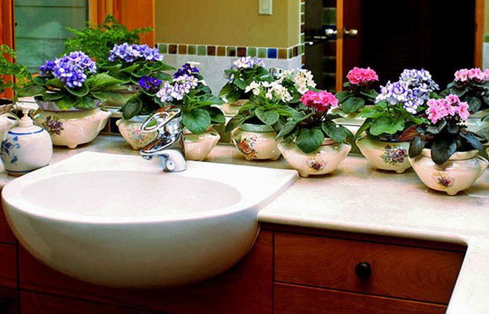 banyolar için çiçek