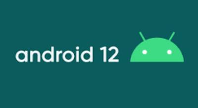 Begini Cara Mengatur Homescreen di Android 12