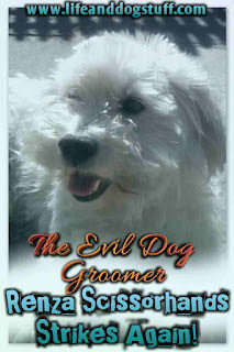 The Evil Dog Groomer - Renza Scissorhands Strikes Again!