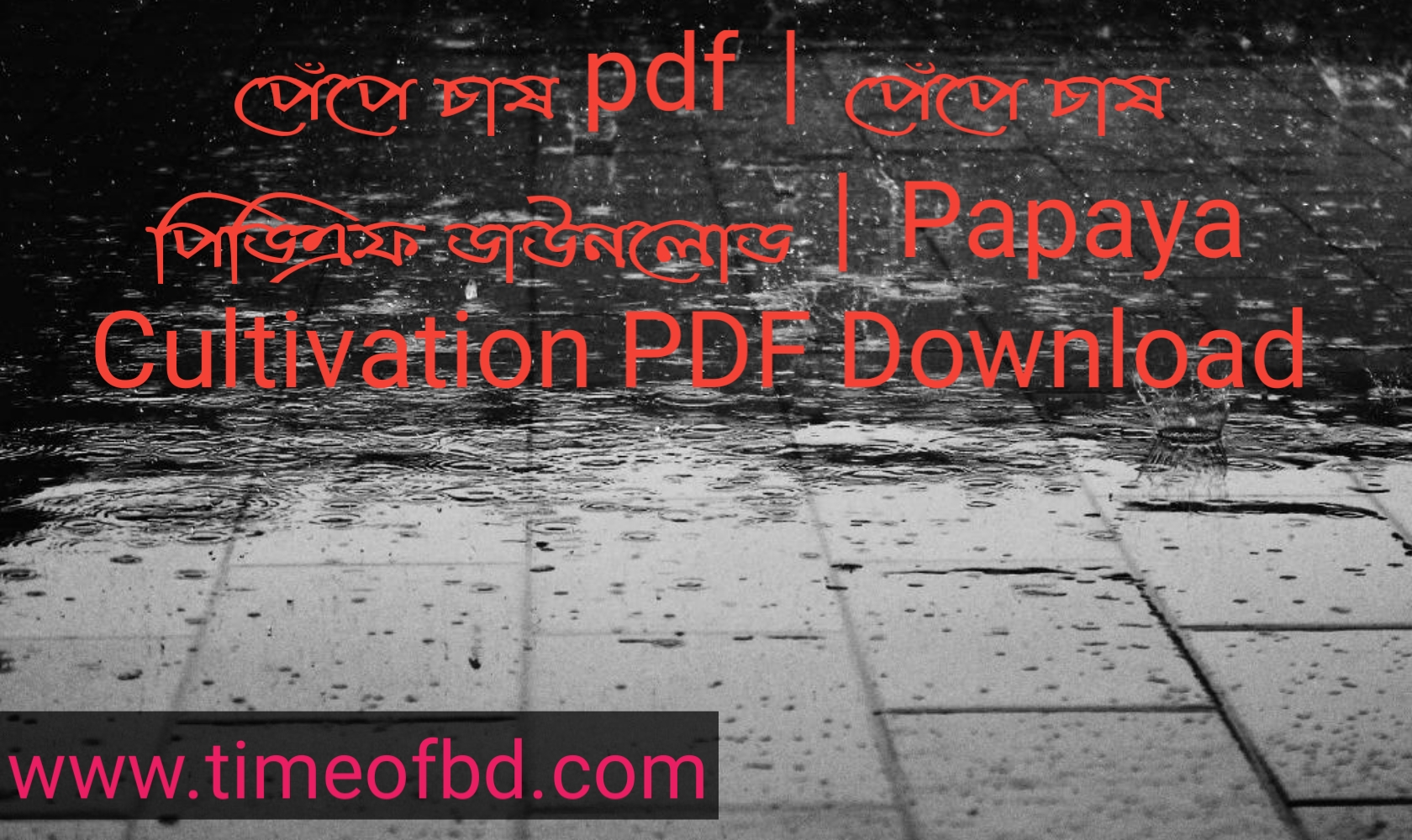 পেঁপে চাষ pdf, পেঁপে চাষ পিডিএফ ডাউনলোড, পেঁপে চাষ পিডিএফ, পেঁপে চাষ pdf download,