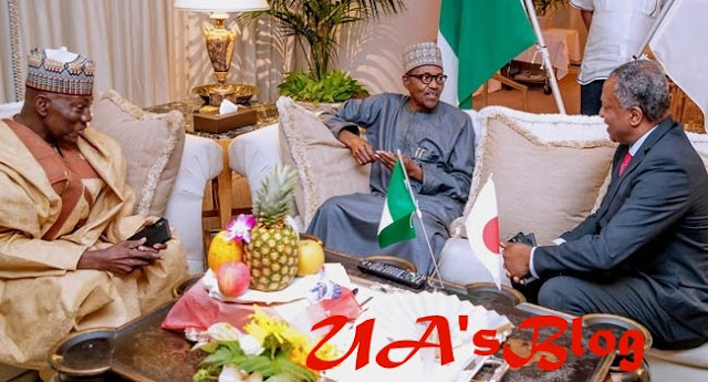 Presidency speaks on alleged protest against Buhari in Japan