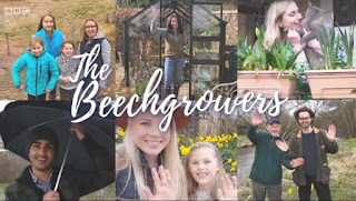 The Beechgrowers