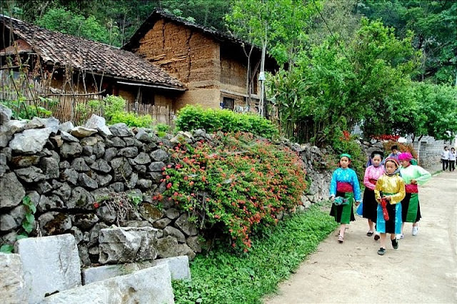 Discovering the homestay tourism in Ha Giang 4