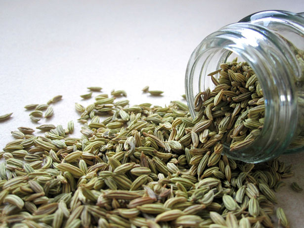 Cumin: A Cure in the Form of a Spice
