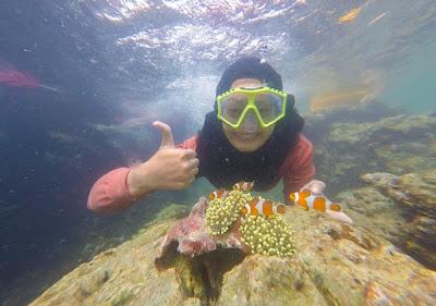 Foto dengan Nemo di pahawang