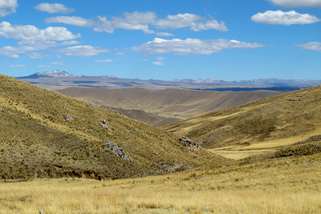 Researchers document early, permanent human settlement in Andes