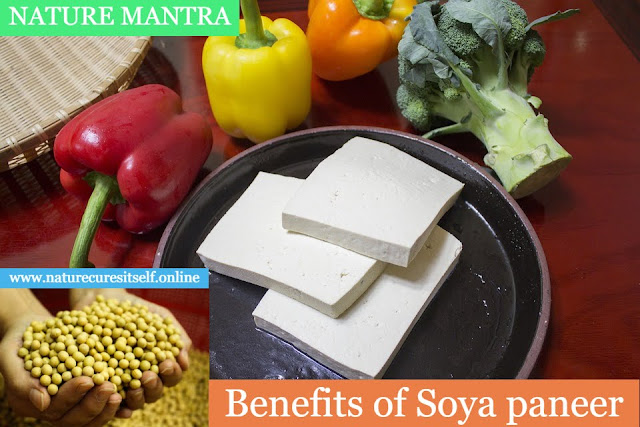 Tofu (Soya Paneer) Benefits And Side Effects in Hindi, Tofu Khane Ke Fayde, Gun, Labh, upyog Aur Nuksan in Hindi