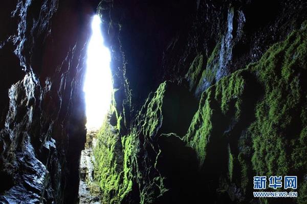 เขตอนุรักษ์เสินหนงเจี้ย (Shennongjia Nature Reserve)