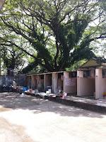 http://www.melynsalam.com/2017/04/fort-kochi-staycation-part-i.html
