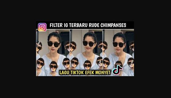 Nama Filter Monyet Tiktok