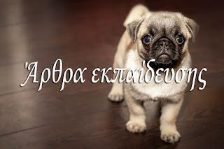 Αρθρα εκπαιδευσης σκυλου