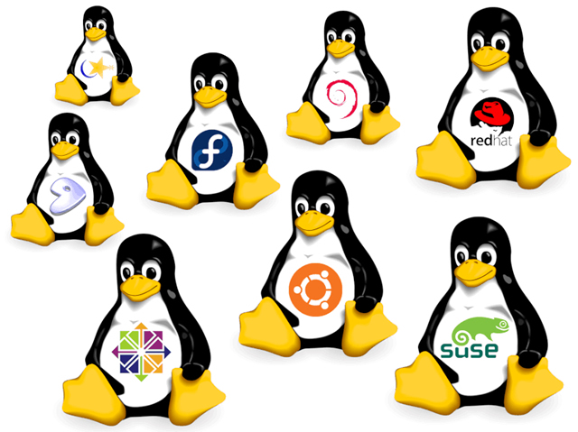 Various Linux distributions