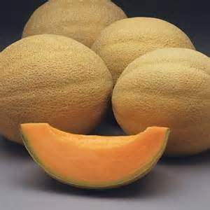 Fruit And Veggies Focus On Nutrition The Athena Cantaloupe How much fiber is in cantaloupe? fruit and veggies focus on nutrition