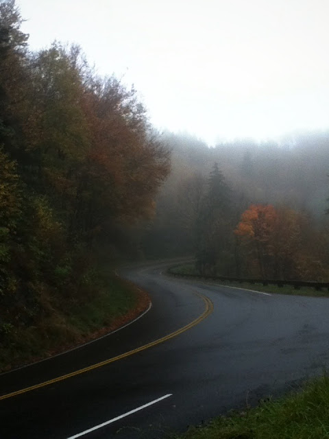 Great Smoky Mountains Road