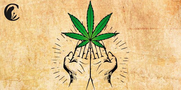 Prohibición drogas cannabis legalidad