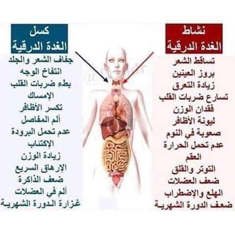 اعراض خمول الغدة الدرقية وطرق علاجها