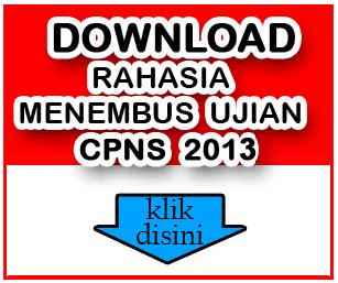 Info CPNS 2013, Pendaftaran CPNS tahun 2013