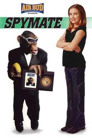 Spymate 2006 BRRip 720p Dual Audio In Hindi English