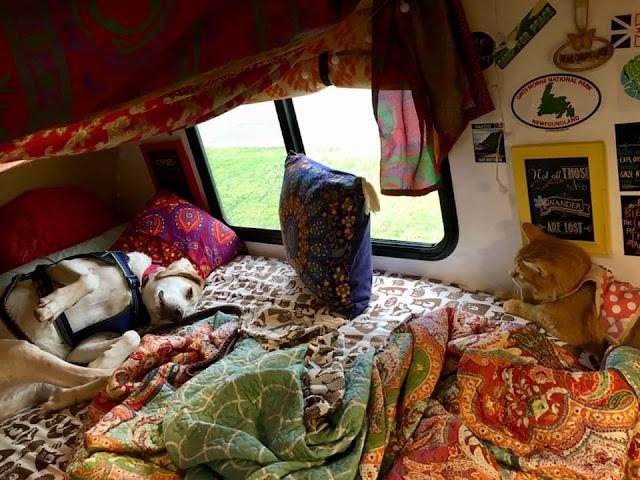 Walmart camping, tiny trailer camping