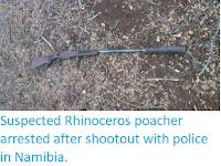 https://sciencythoughts.blogspot.com/2019/09/suspected-rhinoceros-poacher-arrested.html