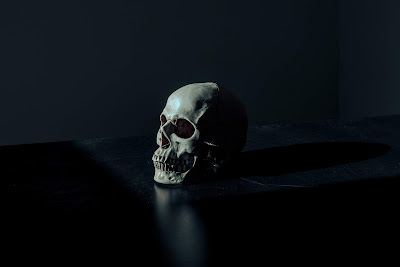 White and Black Skull figurine on black surface Photo by Mathew MacQuarrie on Unsplash