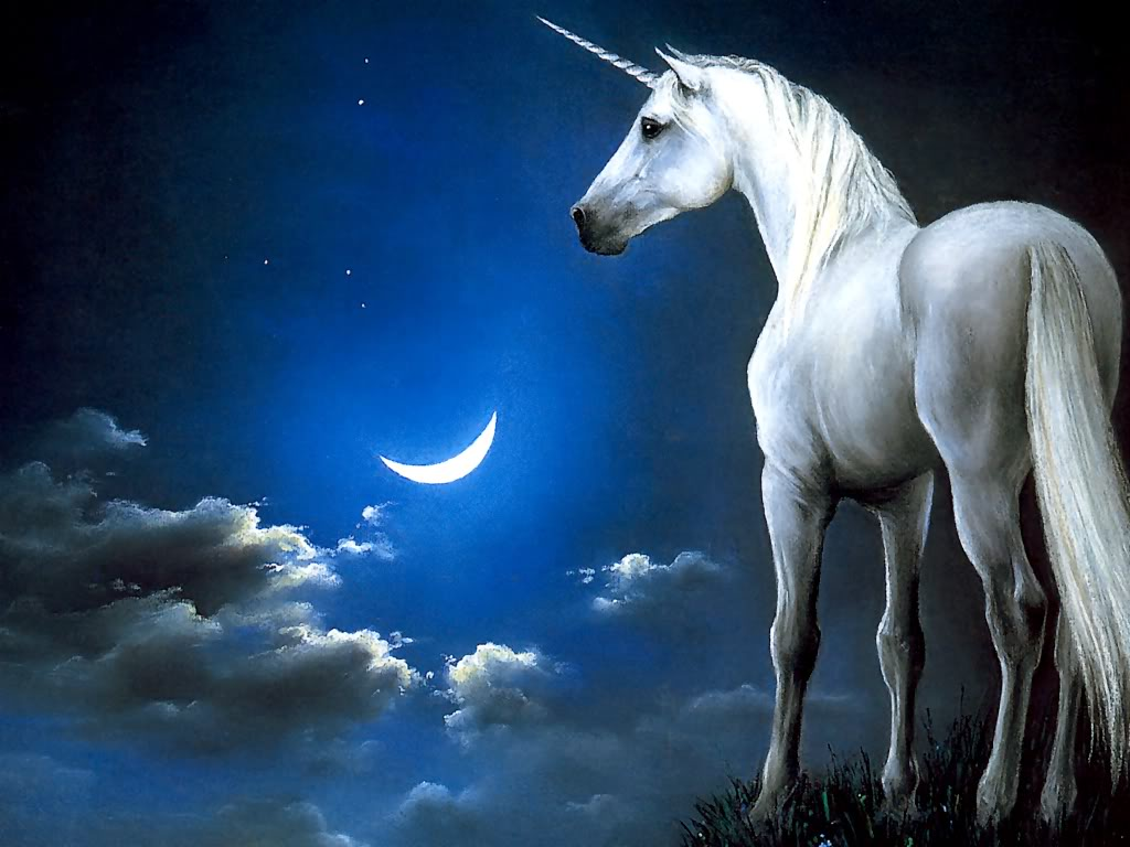 Unicorn | The Horned Horse - Mystery Files
