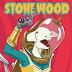 "(+AUDIO) Stonewood: entra y escucha su nuevo single, ""Out Of Sight"""